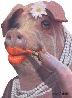 Makeup on a Pig