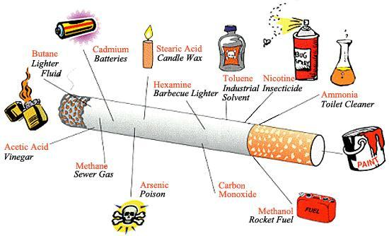 cigarette ingredients