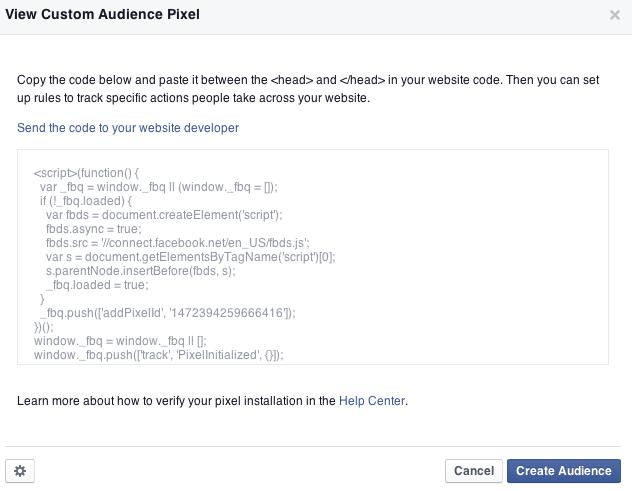 view custom audience pixel