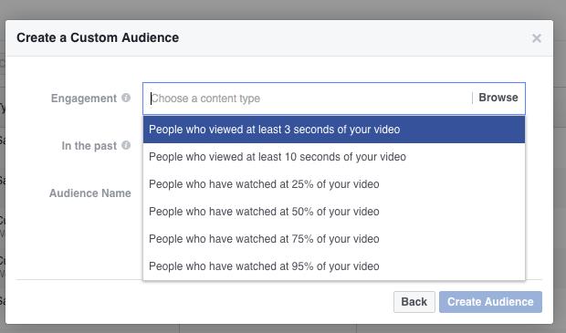 custom audience of vide viewers