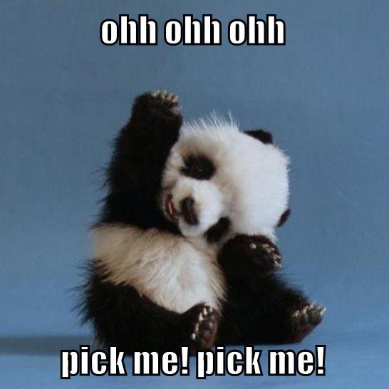 ohh ohh ohh pick me pick me