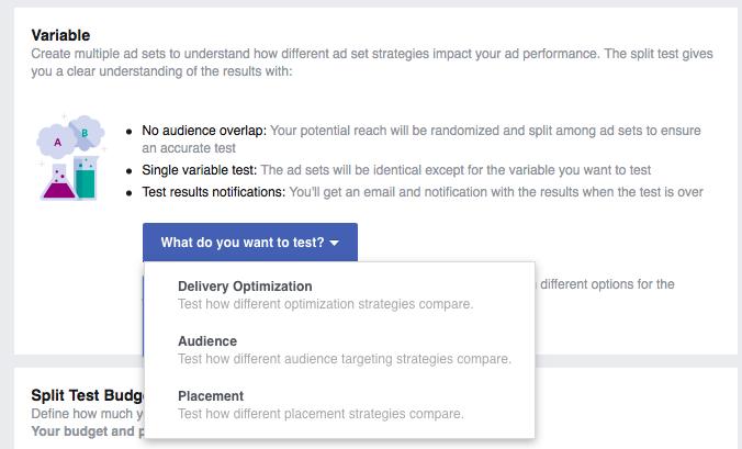 Facebook Split Testing options