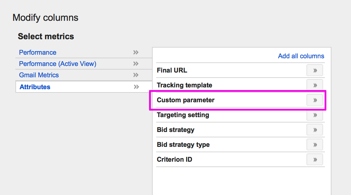 Set Custom Parameters under Attributes
