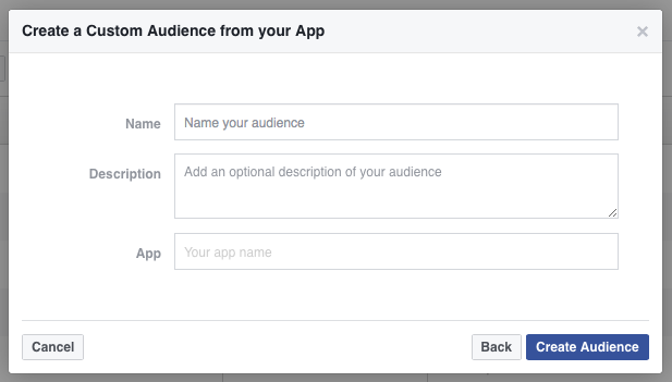Name your Custom Audience.