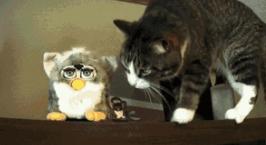 Also, Furbys were weird.