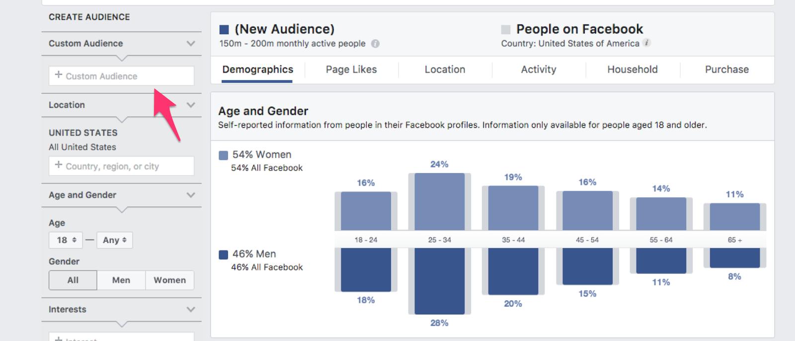 Custom Audiences segment depicted.