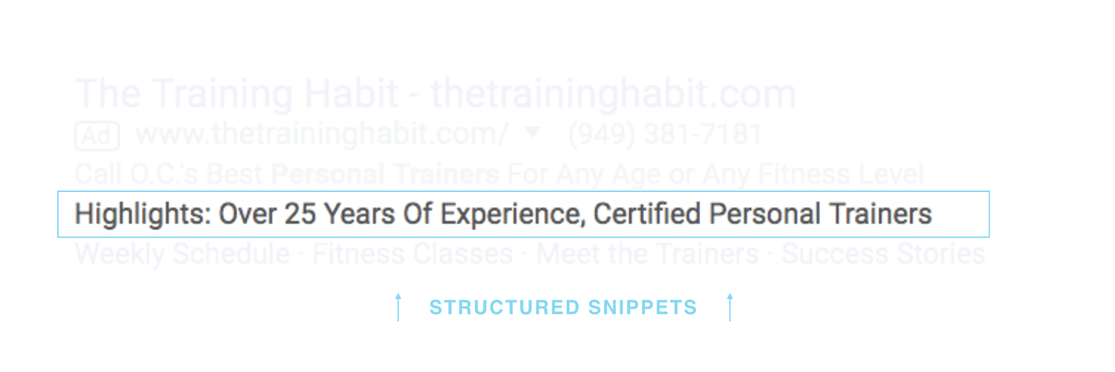 This personal trainer finds a way to add a more generic structured snippet to their ad.