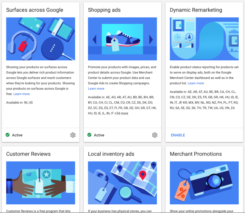 Google Ads Program choices
