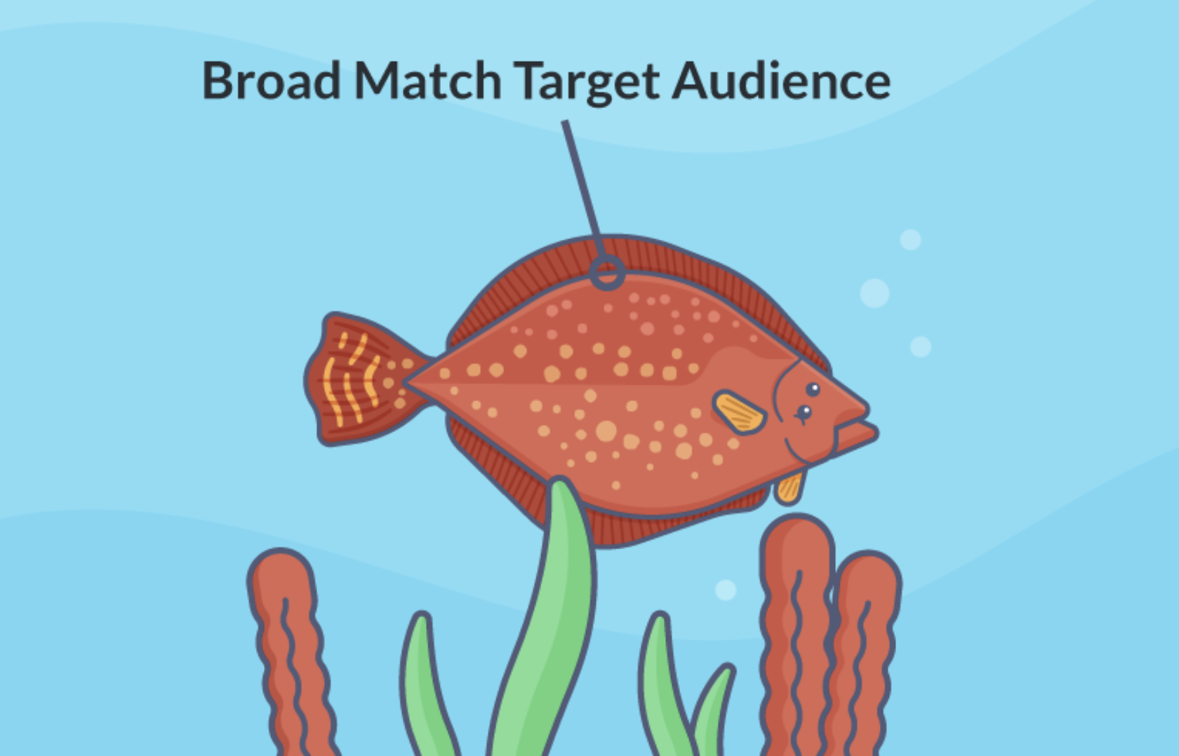 blog post image bottom feeding approach img8 - the broad match target audience bottom feeding flounder