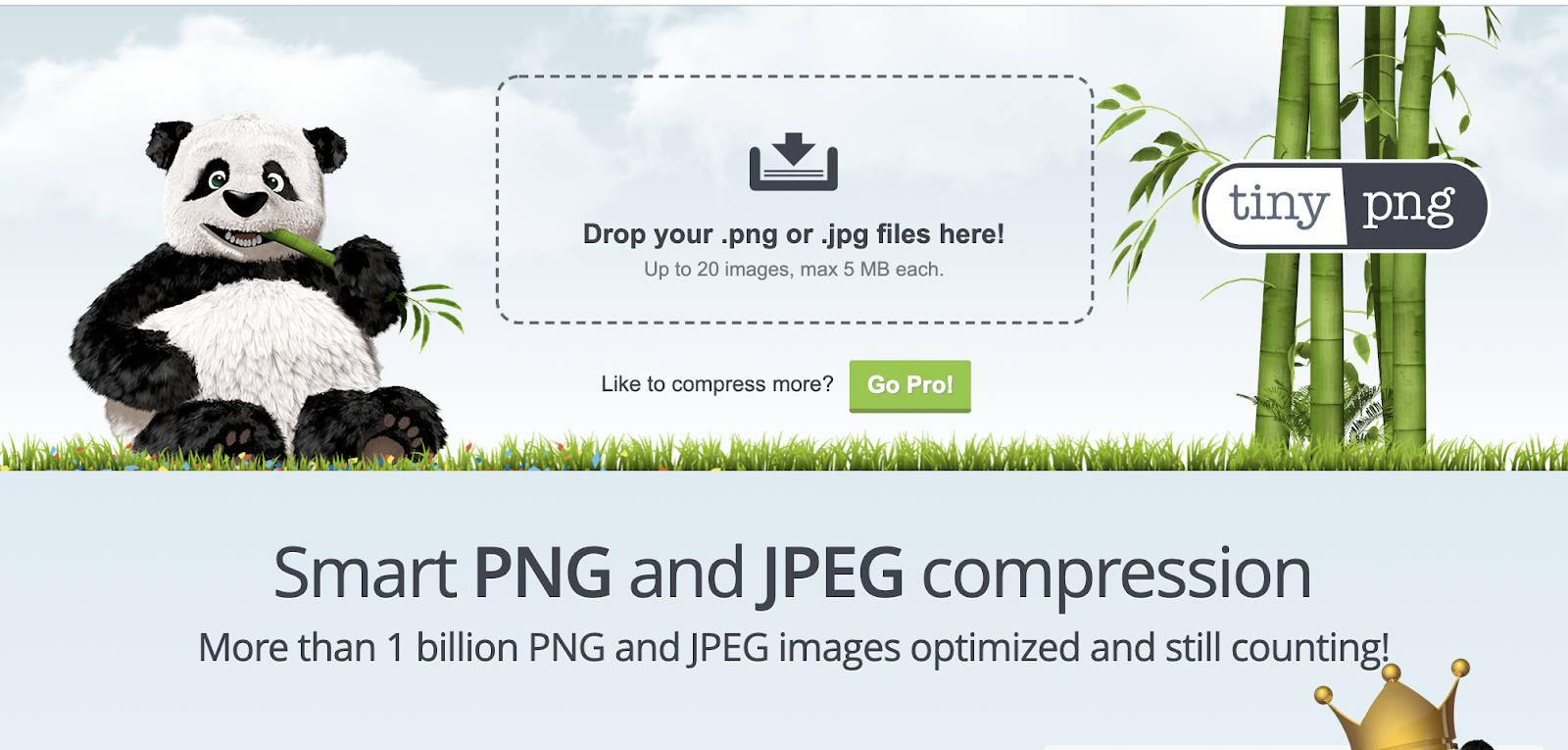landing page optimization - tinypng
