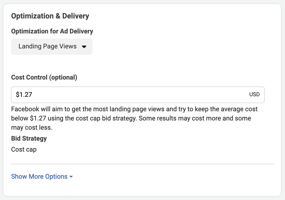 Facebook cost cap bidding strategy