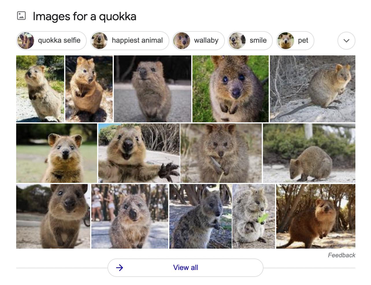 Google's image pack