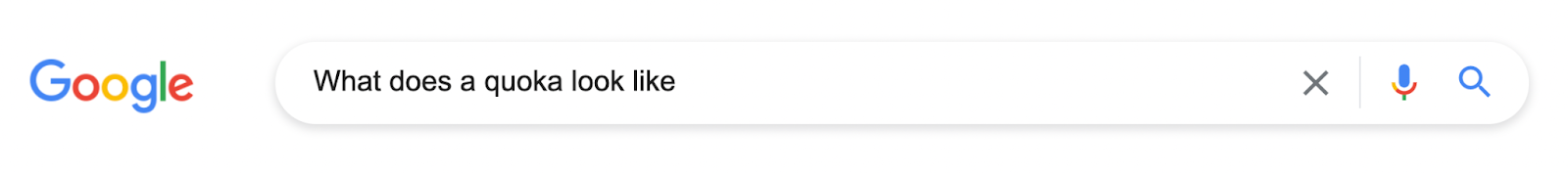 Search query in the Google search bar